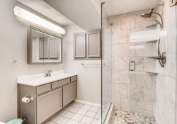 5832 S Orleans Way Centennial-large-020-8-Lower Level Bathroom-1500x999-72dpi