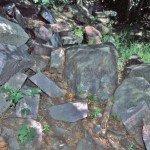 Living on Melting Granite