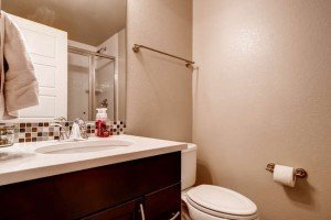 3554 Beeler St Denver CO 80238-small-024-Lower Level Bathroom-666x444-72dpi