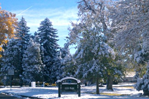 Even with snow on the ground, Denver's City Park is popular. Cross -country skiers and snowshoes are common.