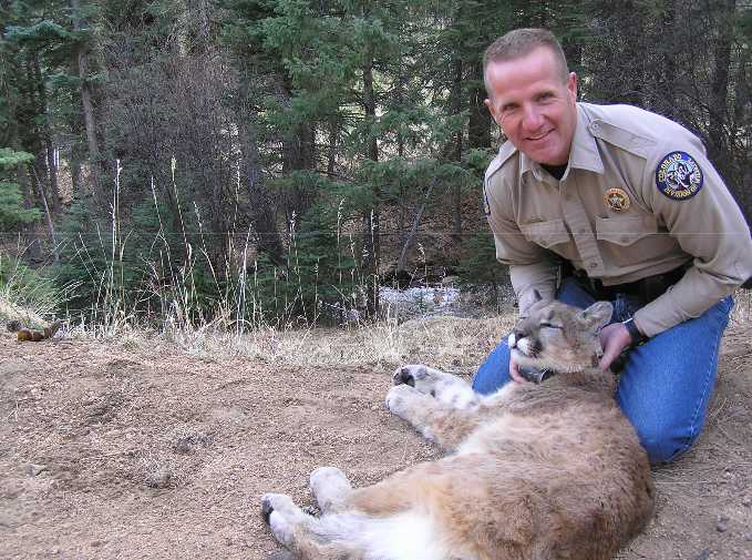 Ty Petersburg of Colorado Parks and Wildlife Management.