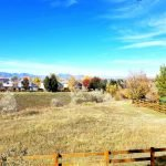9753 Quay Loop in Westminster, Colorado