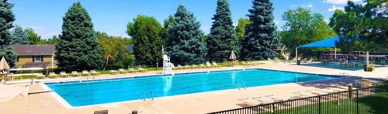 Homestead swimming pool