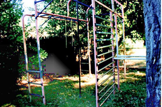 Yard with Playground